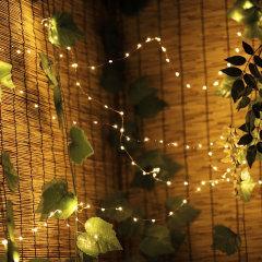 Algemene LED-microlichten om warmte, fonkeling en koelfactor te brengen aan elk huis, kantoor, mangrot of kamer. Perfect voor speciale gelegenheden, feestdagen of het hele jaar door leuk. Al wat je nodig hebt, zijn enkele batterijen (niet inbegrepen) en een beetje fantasie.