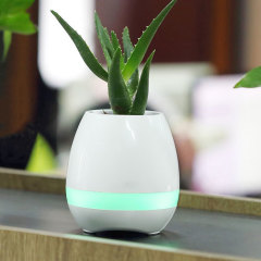 Introducing Mayhem Rockin Beethoven Plant Pot speaker which lets you touch your plant's leaves to play piano notes, and use the built-in rainbow lightning feature to set the desired mood at home. Features 5W speaker/subwoofer and Bluetooth Connectivity.