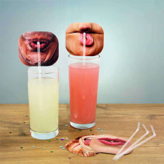 Want to break the ice at any party? This set of 10 party straws will do just that! Whether it's a dinner party or you just want a bit of light humour, these realistic photo straw toppers will get people laughing and joking in no time!