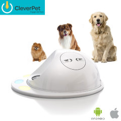 CleverPet Interactive Game Hub for Dogs