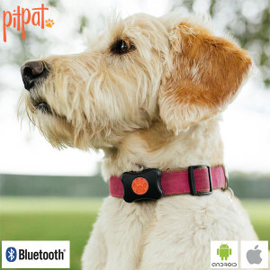 Track activity, fun, rest and indeed play with the PitPat Wearable Activity Monitor for Dogs. Attaching to your dog's collar, PitPat monitors the exercise of man's best friend to ensure they enjoy a healthy lifestyle, viewable by a free companion app.