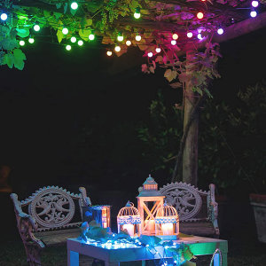 Twinkly Smart RGB 20 LED Multicolour Festoon Lights With US Adapter