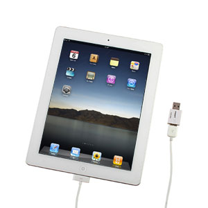 iPad 2 USB SyncCharger Adapter