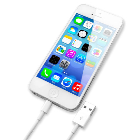 Câble Officiel Apple Lightning vers USB - 1m