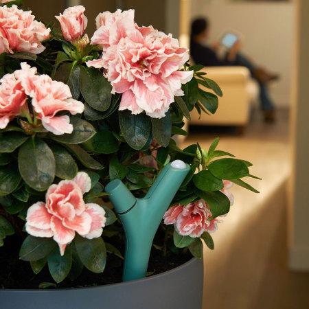 Sensor para Plantas Parrot Flower Power Bluetooth - Verde