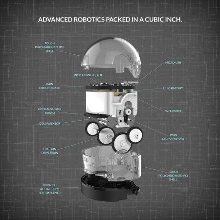Ozobot 2.0 Bit Robot - Double Pack - Titanium Black & Crystal White