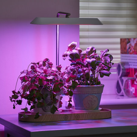 Auraglow LED Indoor Hydroponic Plant & Herb Kitchen Grow Light - White