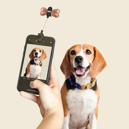 Kikkerland Dog Treat Holder Selfie Clip for Puppy Photos - Black