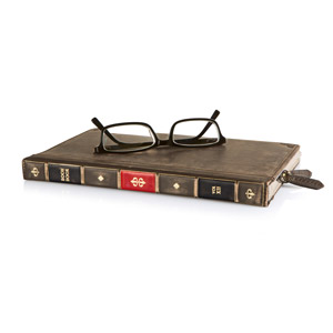 Twelve South BookBook Case and Stand for Apple iPad Mini - Brown / Red
