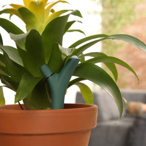 Parrot Flower Power Bluetooth Indoor/Outdoor Plant Sensor - Green