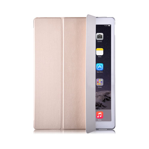 Light Grace Leather iPad Pro Case - Gold