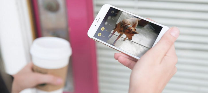 Petcube Interactive Wi-Fi Streaming Pet Camera