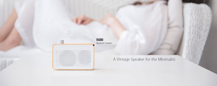Emie Wooden Wireless Bluetooth Speaker and Radio