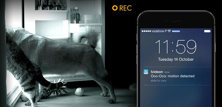 Sistema de videocámara con Wi-Fi inteligente Oco HD